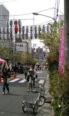 携帯速報:にぎわう一葉桜まつり